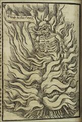 Thumbnail of A skeletal martyr who is all bones excepting his face (O lorde, in thee I trust.) chained to the stake, enveloped in flames.