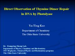 Thumbnail of DIRECT OBSERVATION OF DNA REPAIR IN PHOTOLYASE
