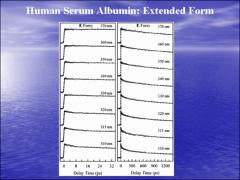 Thumbnail of ULTRAFAST SOLVATION DYNAMICS OF HUMAN SERUM ALBUMIN: CORRELATION WITH CONFORMATIONAL TRANSITIONS AND SITE-SELECTED RECOGNITION
