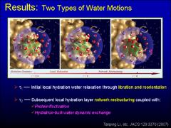 Thumbnail of MAPPING HYDRATION DYNAMICS AND COUPLED WATER-PROTEIN FLUCTUATIONS AROUND A PROTEIN SURFACE