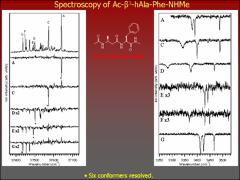Thumbnail of CONFORMATION AND DIASTEREOMERIC SPECIFIC SPECTROSCOPIC INVESTIGATION OF $\alpha$/$\beta$-PEPTIDES Ac-Phe-$\beta$$^{3}$-hAla-NHMe AND Ac-$\beta$$^{3}$-hAla-Phe-NHMe