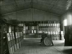 Thumbnail of Botanical Hall, The Ohio State University: Interior view of plant specimen exhibit