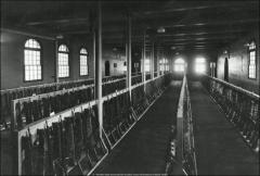 Thumbnail of Hayes Hall, The Ohio State University: Interior view of arsenal