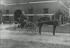Thumbnail of Horse Barn (later part of Ives Hall), The Ohio State University: William Oxley Thompson and his horse Pronto