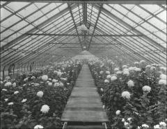 Thumbnail of Experiment Station and Greenhouses, The Ohio State University: Exterior view, 1906
