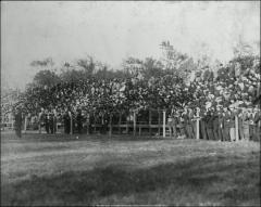 Thumbnail of Ohio Field and Ohio Field Buildings, The Ohio State University: Crowd on the temporary east bleachers, 1907