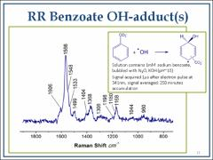 Thumbnail of A STUDY OF THE HYDROXYCYCLOHEXADIENYL RADICAL ABSORPTION USING TIME-RESOLVED RESONANCE RAMAN SPECTROSCOPY
