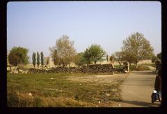 Thumbnail of Smederevo Fortress