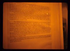 Thumbnail of Printed text about the Battle of Kosovo