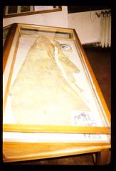 Thumbnail of Garment in which Tsar Lazar died at Kosovo in 1389
