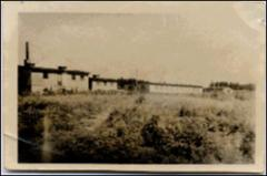 Thumbnail of Photograph: Barracks in DP Camp, 1946, Stephanskirchen, Germany