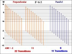 Thumbnail of STUDY OF THE ZEEMAN EFFECT IN THE  [17.6]7.5  ¨« X18.5 TRANSITION IN HOLMIUM MONOXIDE (HoO)