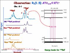 Thumbnail of SPECTROSCOPY IN SUPPORT OF PARITY NONCONSERVATION MEASURMENTS: THE $A^{2}$$\Pi-X^{2}\Sigma^{+}$ (0,0) BAND OF BARIUM MONFLUORIDE