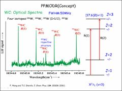 Thumbnail of PUMP/PROBE MICROWAVE-OPTICAL DOUBLE RESONANCE (PPMODR) STUDY OF TUNGSTEN CARBIDE (WC) AND PLATINUM CARBIDE (PtC)