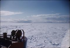 Thumbnail of Pack ice off Ross Ice Shelf