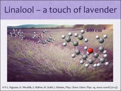 Thumbnail of GAS-PHASE STRUCTURES OF LINALOOL AND COUMARIN STUDIED BY MICROWAVE SPECTROSCOPY