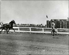 Thumbnail of Jesse Owens races a horse in Cuba, 1936