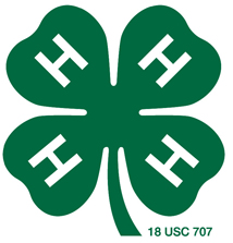 Ohio 4-H Youth Development logo